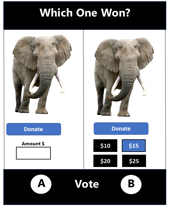 Blank Box or Buttons? Which Format Increased Online Donations?